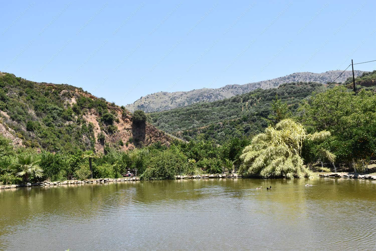 The Botanical Park and Gardens of Crete