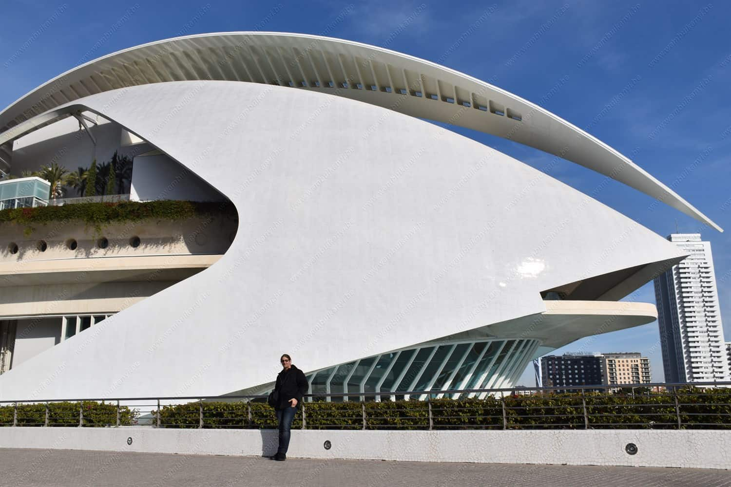 Opera House in City of Arts and Sciences Valencia